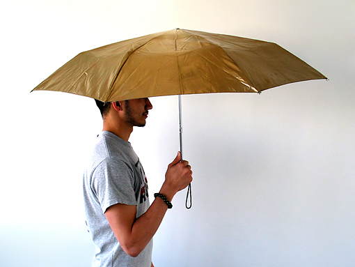 Ultrasonic umbrella
